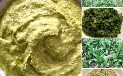 Bärlauch-Dip – Leckere Dips für Gemüsesticks