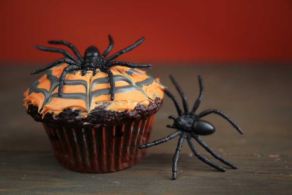 Spinnennetz-Schoko-Cupcakes